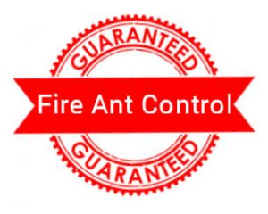 Fire Ant Services